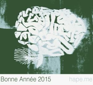 bonne-année2015